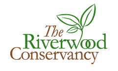 The Riverwood Conservancy Logo